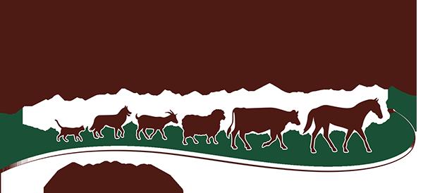 chisholm-trail-veterinary-clinic-luling-texas-logo