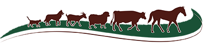 chisholm-trail-veterinary-clinic-luling-texas-logo-small