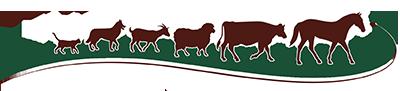 chisholm-trail-veterinary-clinic-luling-texas-logo-small